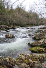 Little Pigeon River at Greenbrier in the Great Smoky Mountains National Park