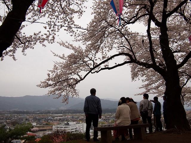 2016.4.10 お花見