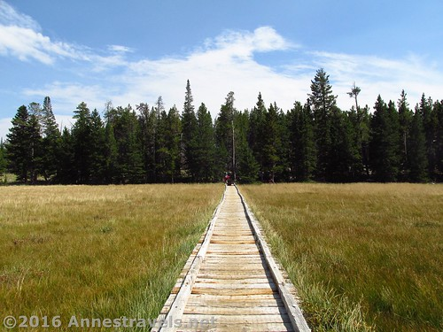 Boardwalk through the meadow on the Stough Creek Basin Trail, Wind River Range, Wyoming