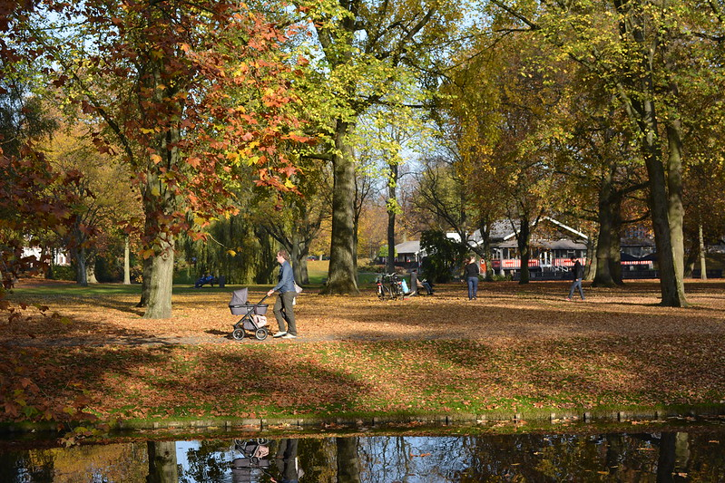 Het park bij de euromast city rotterdam stadsgids for De tuinen rotterdam