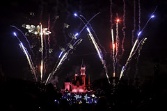 02468841-73-Fireworks Over the Happiest Place on Earth-2