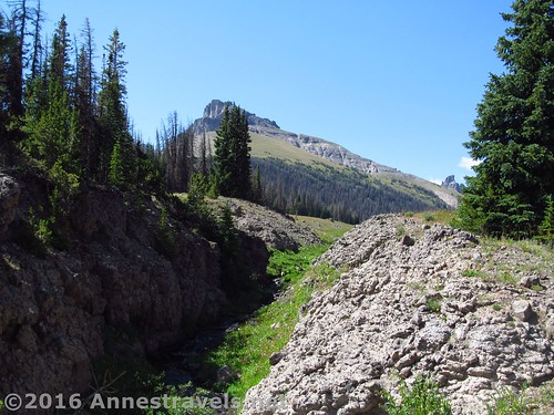 Dundee Creek descends into a small canyon below Bonneville Pass, Shoshone National Forest, Wyoming