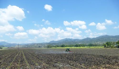 P16-Negros-San Carlos-Dumaguete-Route (33)