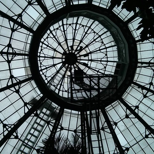 Up at the dome #toronto #allangardens #gardens #architecture #greenhouse #dome