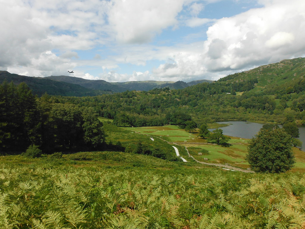 Loughrigg Fell 4