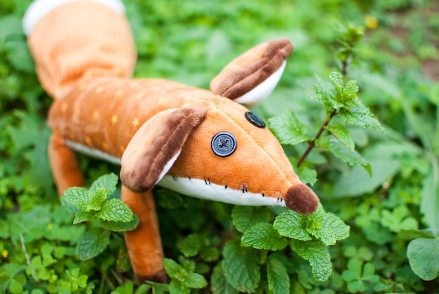 ??? fox