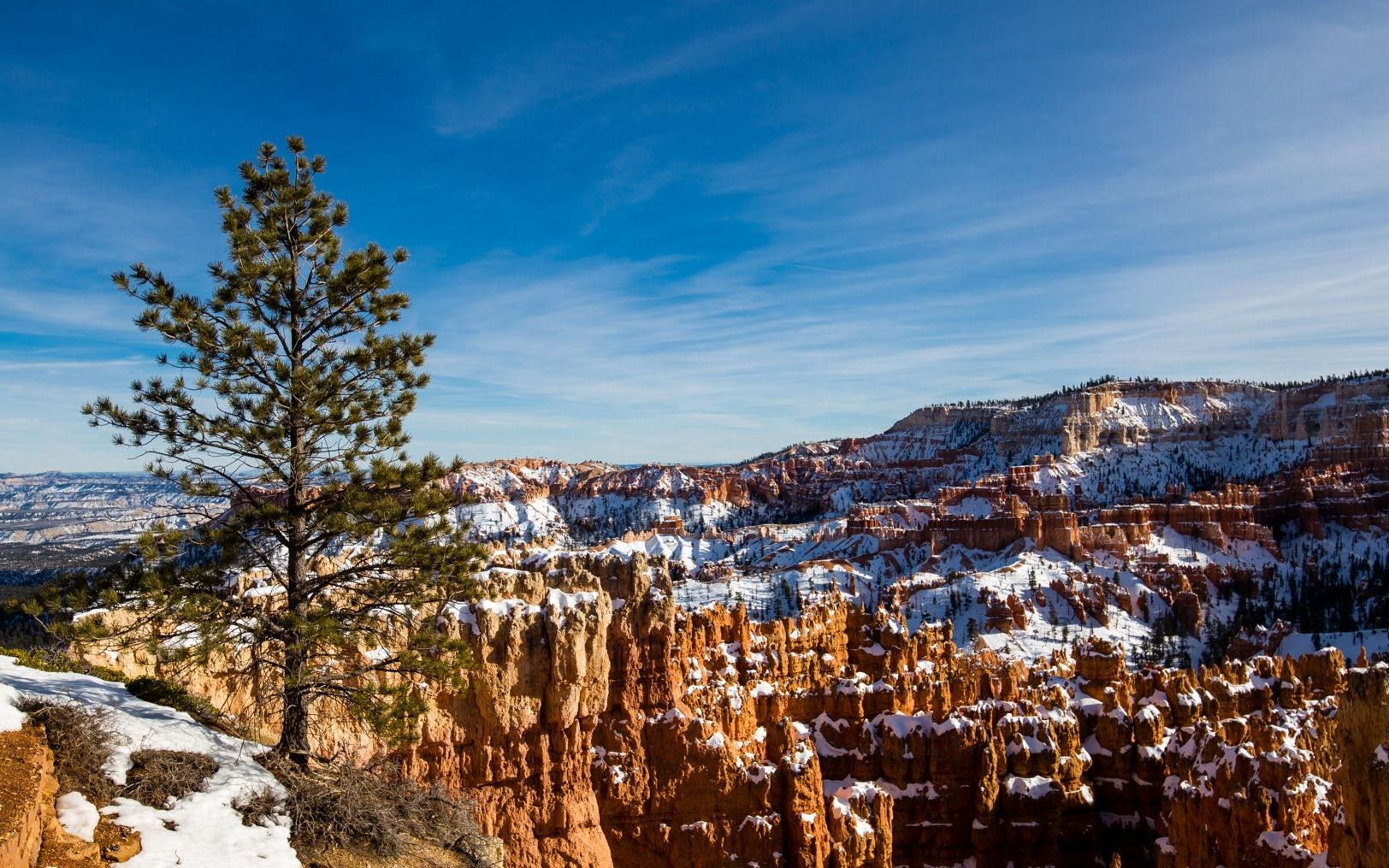 Bryce Canyon-9974