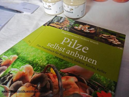 Pilze selber anbauen