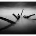 Longniddry Wreck by NorthernXposure