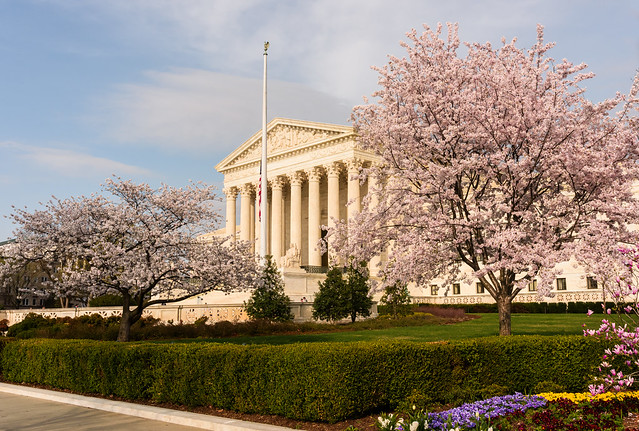 US Supreme Court Shrouded by Cherries