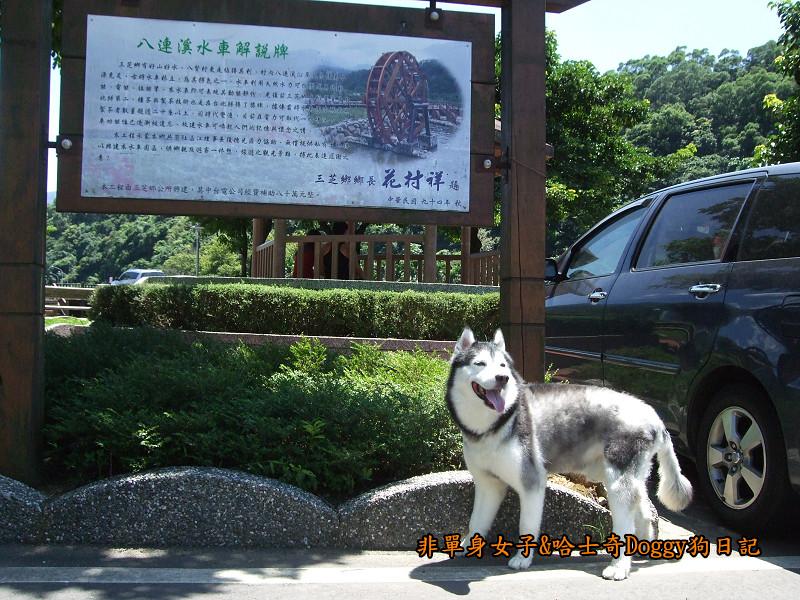 Doggy三芝八連溪16
