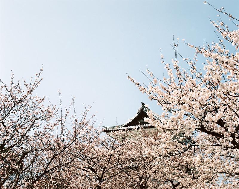 160330-0407 關西:金澤城