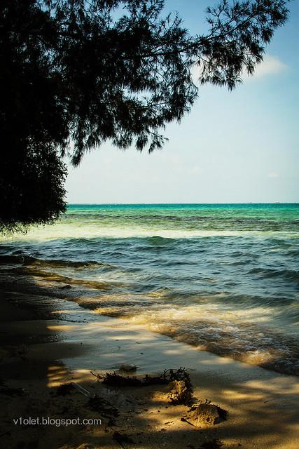 Pulau Semak Daun2-2245rw