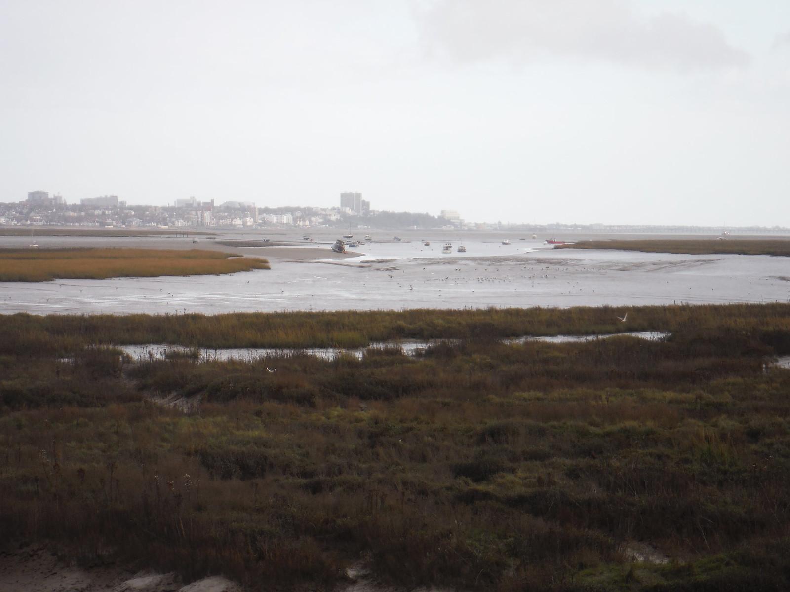 Marsh, Creek & Southend-on-Sea, from Canvey Island SWC Walk 258 Benfleet Circular (via Canvey Island)