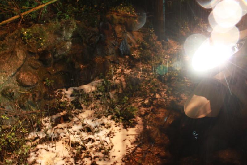 2016-台北陽明山-瑞雪-難得一見的雪白山景-17度C隨拍 (14)