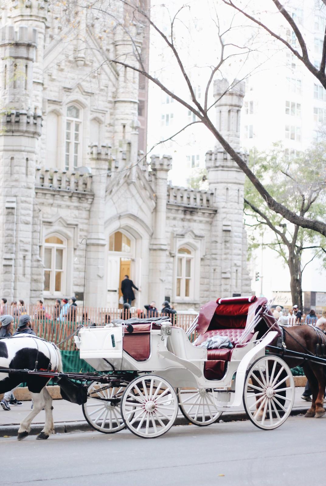 Kutsche in Chicago