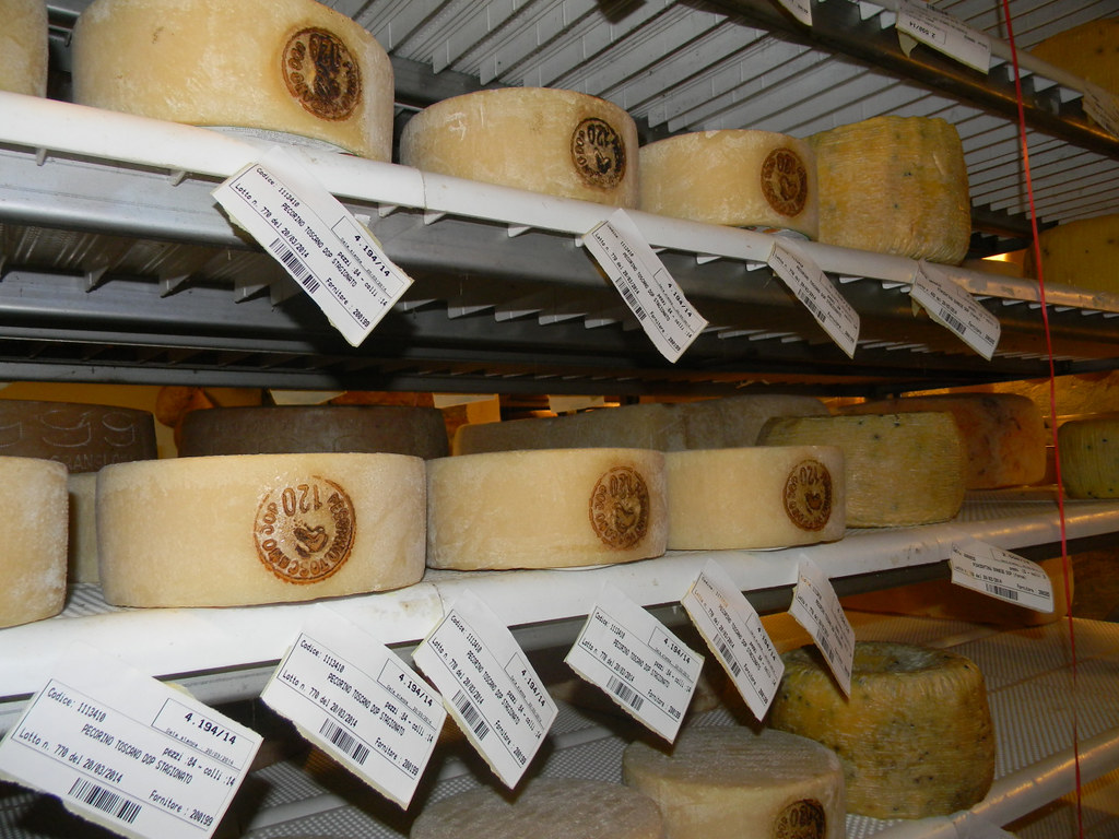 A Trip to a Cheese Cave, Arona, Piedmont, Italy 4