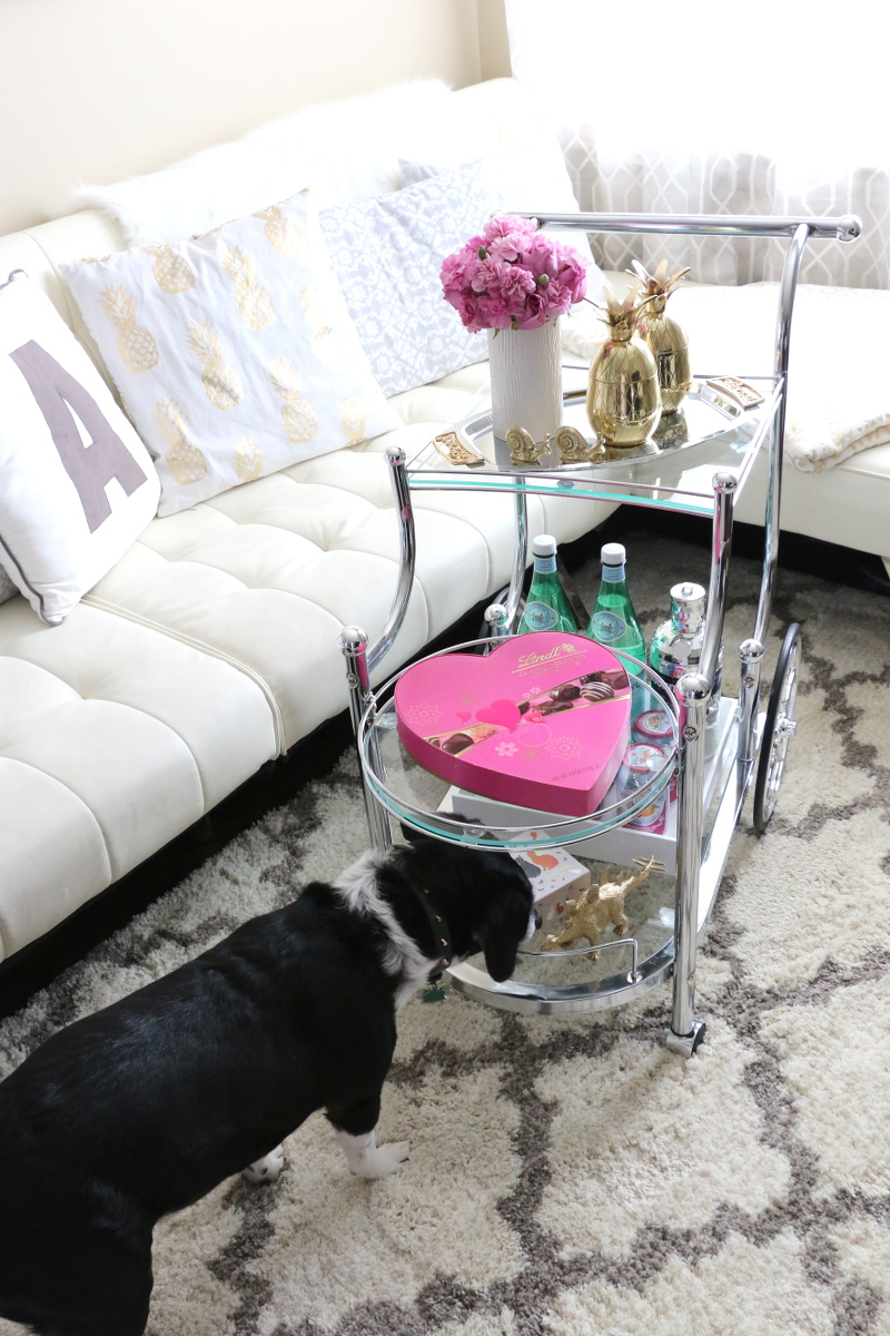 how-to-style-a-bar-cart-accessories-dog