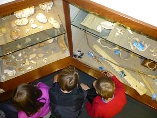 Shells and bones