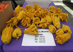 buddha's hands for sale