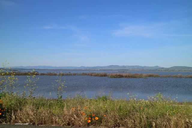 Sonoma County 189