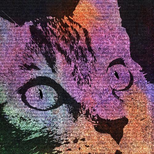 Digital collage - cat