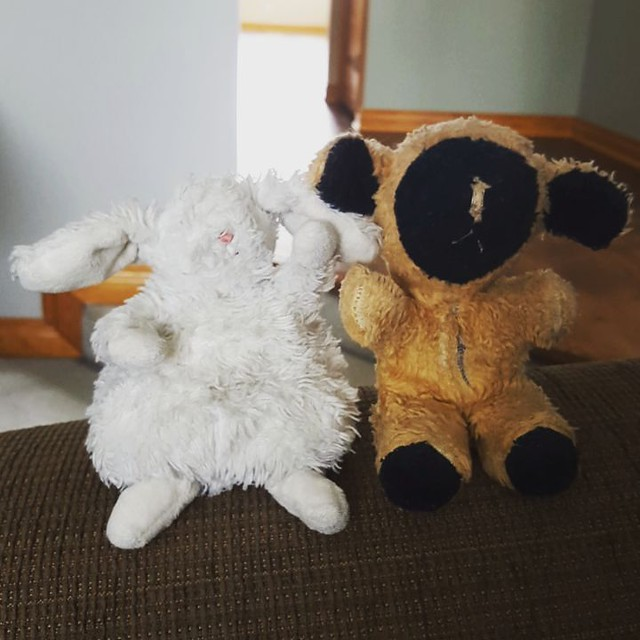 Matteo's Bunny met my Little Lamb today. They have a lot of things in common, like not being able to see their eyes....