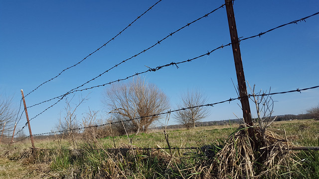 Barbed wire fence in bad shape