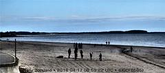 Broughty Beach DSCF6585