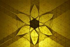 Origami Tessellations 2016