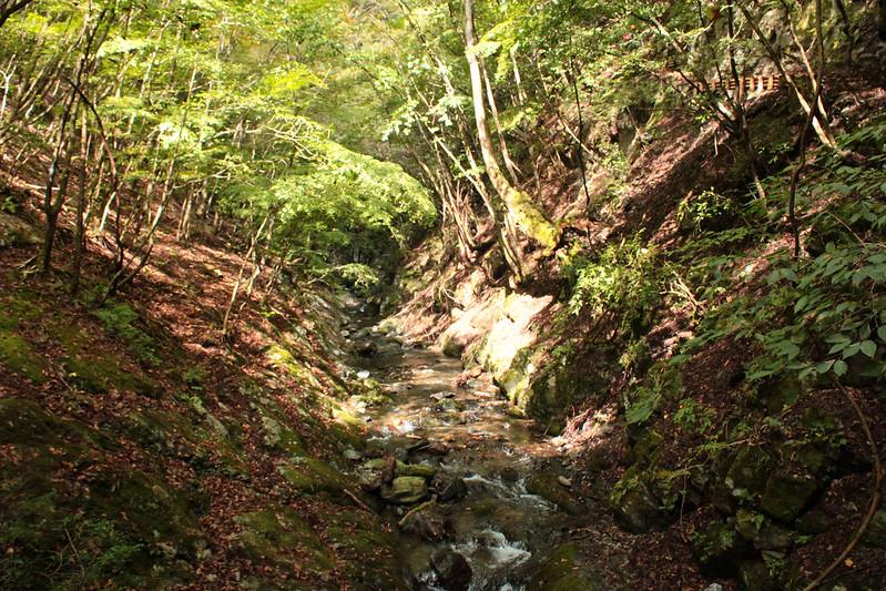 20101023-川苔山-0040.jpg