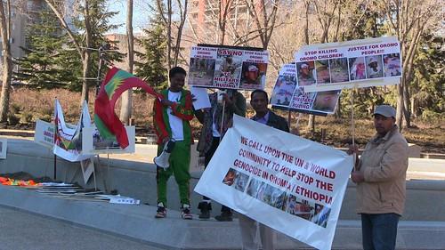 Oromo Community Protest - March 11, 2016