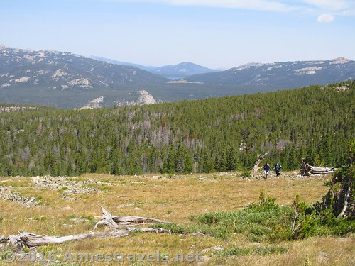 You can choose to go up the meadows to get to the top of Roaring Fork Mountain, Wind River Range, Wyoming
