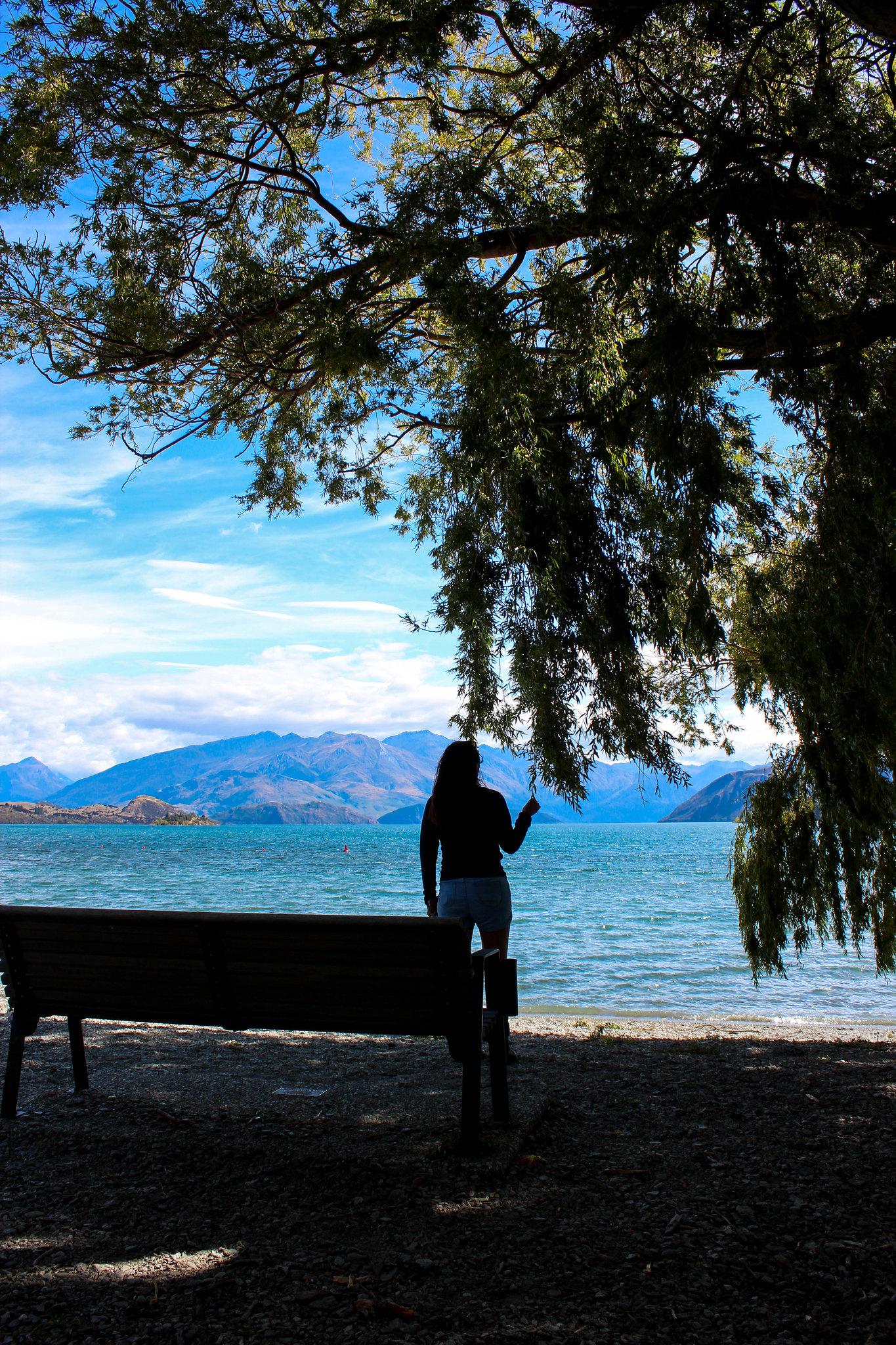Wanaka Recreation Reserve (view of Lake Wanaka)