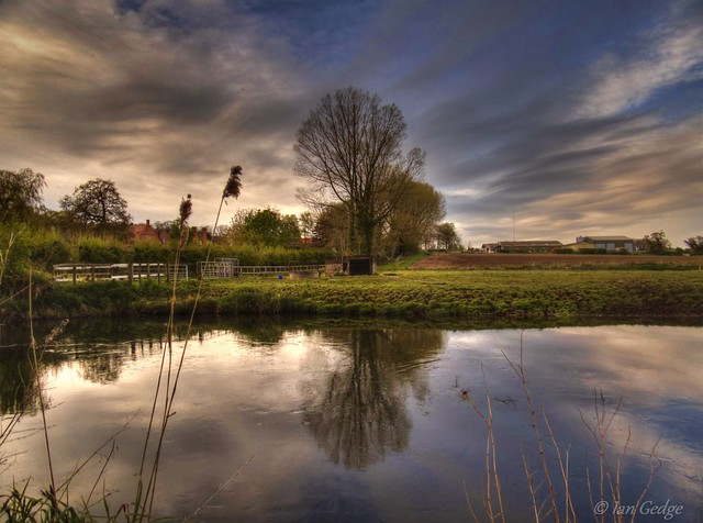 The River Bure at Oxnead