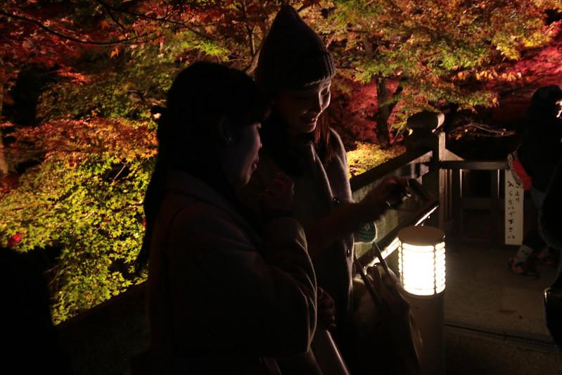 20141122-武奈ヶ岳&京都ライトアップ-0735.jpg