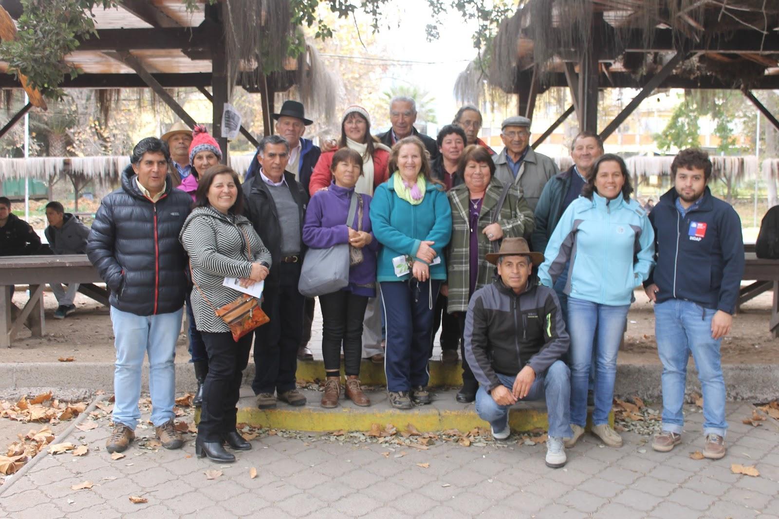 Usuarios de PRODESAL Pelarco comienzan gira técnica por La Serena