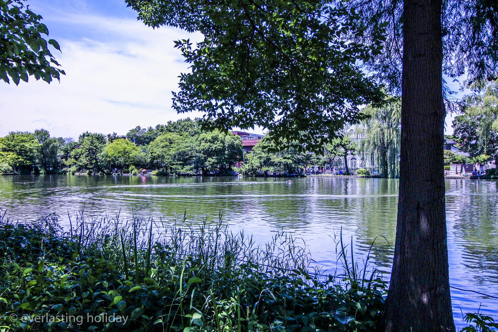石神井公園 Shakujii Park-0003