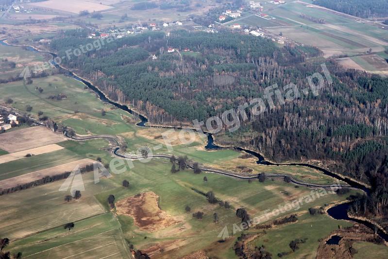 Orzyc w okolicach miejscowości Młodzianowo.