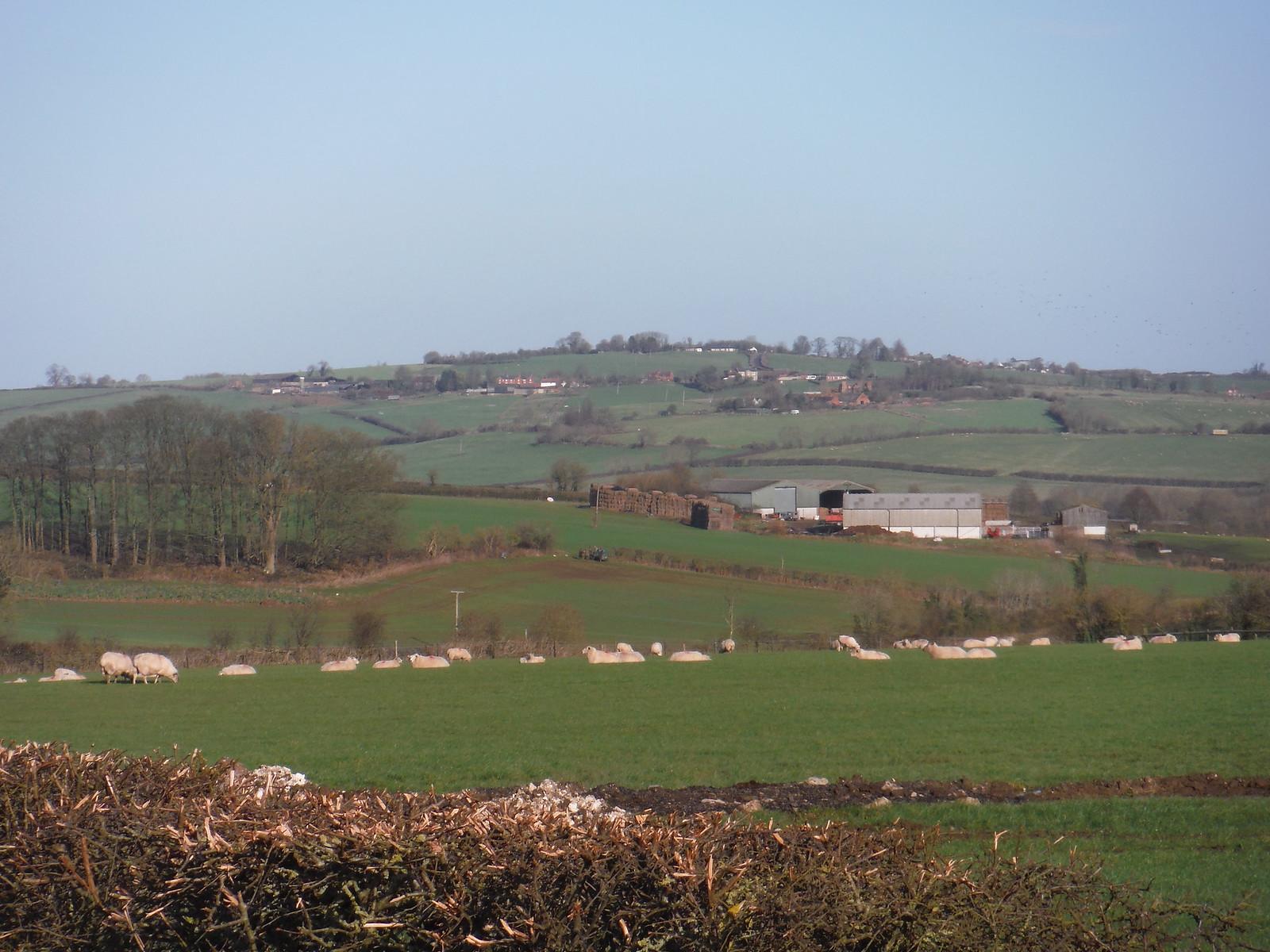 Chearsley, from farm track NE of Long Crendon SWC Walk 191 Haddenham Circular (via Brill)