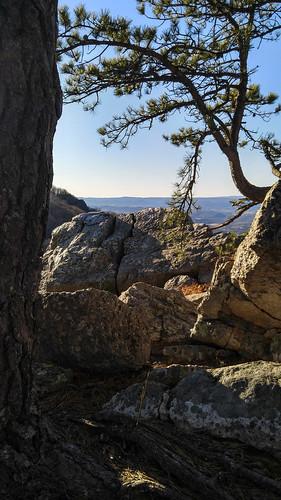 camerphone southwestvirginia wythville highrockstrail bigsurveywildlifemanagementarea lgv10 virginiawildlifemanagement hikingnearwytheville