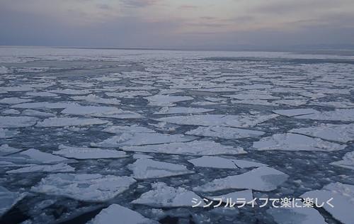流氷、おーろら号流氷帯に近づく