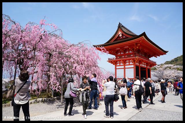日本京都_清水寺 櫻.16
