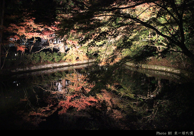 京都-清水寺153