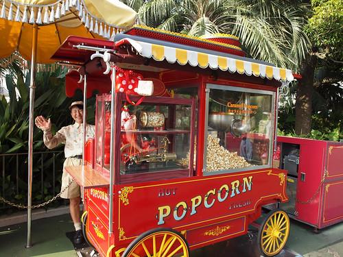 Popcorn Lady