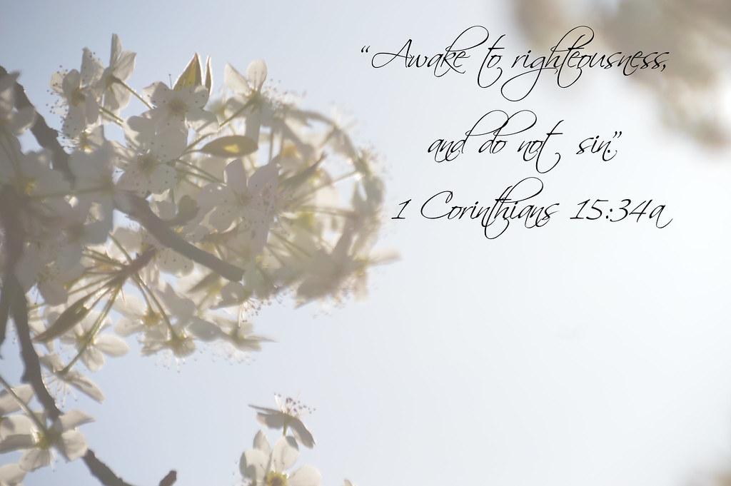 1 Corinthians 15:34a