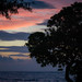Small photo of Kapaa pre Sunrise