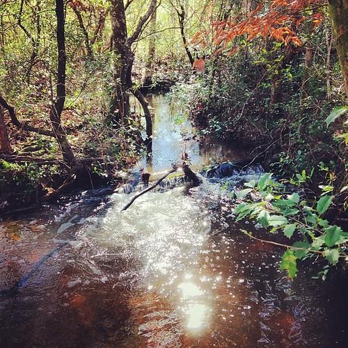 stream farmlife uploaded:by=flickstagram instagram:photo=63340902766881171646253686 ridingthekubota instagram:venuename=leefarm instagram:venue=177588213