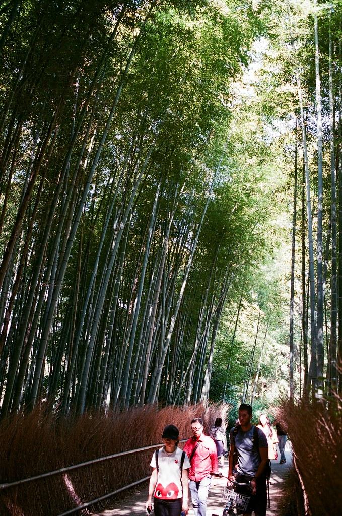 嵐山 竹林 京都 Arashiyama Kyoto, Japan / AGFA VISTAPlus / Nikon FM2 2015/09/28 後來我走進來竹林,周圍很多人,想要等一個沒有太多人的場景要等很久,那時候應該要早一點來的,雖然買了鏡頭之後就快快的坐車來這邊。  我記得那天天氣很好,陽光有點強,這裡我拍的很沒把握,因為光線的反差太大了,我抓不出個感覺來。  那時候我坐在地上等了好像 30 多分鐘,想等一個我理想的淨空的畫面。  沒想到我竟然等到認識的人!那時候一直在日本其實朋友都不意外,意外的是竟然還真的能遇到我,然後回台灣竟然成為在日本能遇到我的話題。  其實那時候我真的好感激能遇到你們,我才能短暫的跳出我的框框外。  Nikon FM2 Nikon AI AF Nikkor 35mm F/2D AGFA VISTAPlus ISO400 0990-0005 Photo by Toomore