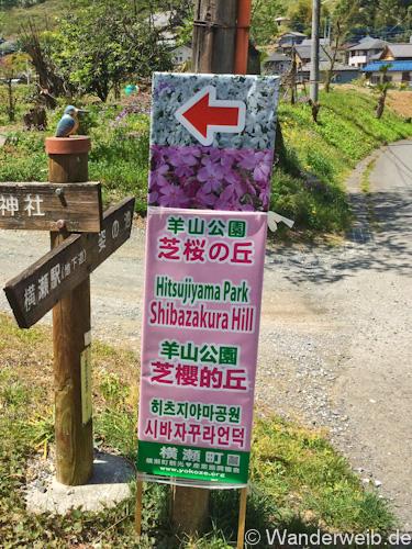 hinata_chichibu20 (1 von 9)